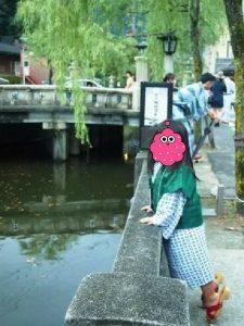 城崎温泉のシンボル、大谿川(おおたにがわ)
