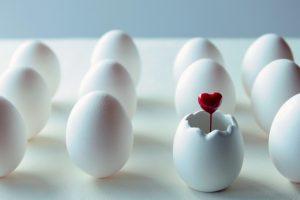 白い卵の列